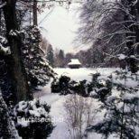 Fruchtspeicher - Winteridylle - der Fruchtspeicher auf der grossen Wiese