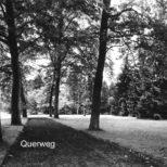 Querweg - Platanenallee am Querweg